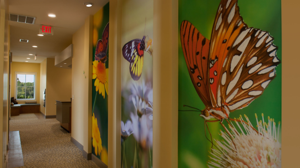 NMN Aug Blog.Facilitating Healing.Butterfly wall art panels at Winchester Pediatrics